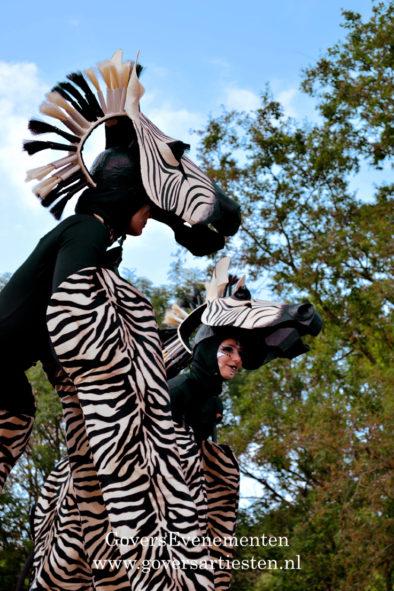 Zebra, zebra's. dieren op stelten, steltacts, stiltlife, steltenact, steltenacts, steltentheater, artiesten boeken, artiestenburo, artiestenbureau, straattheater op stelten, dierentuin, dierenact, dierentheater, theater voor kinderen, straattheateract, Govers Evenementen, evenement organiseren, thema act, straatfestival
