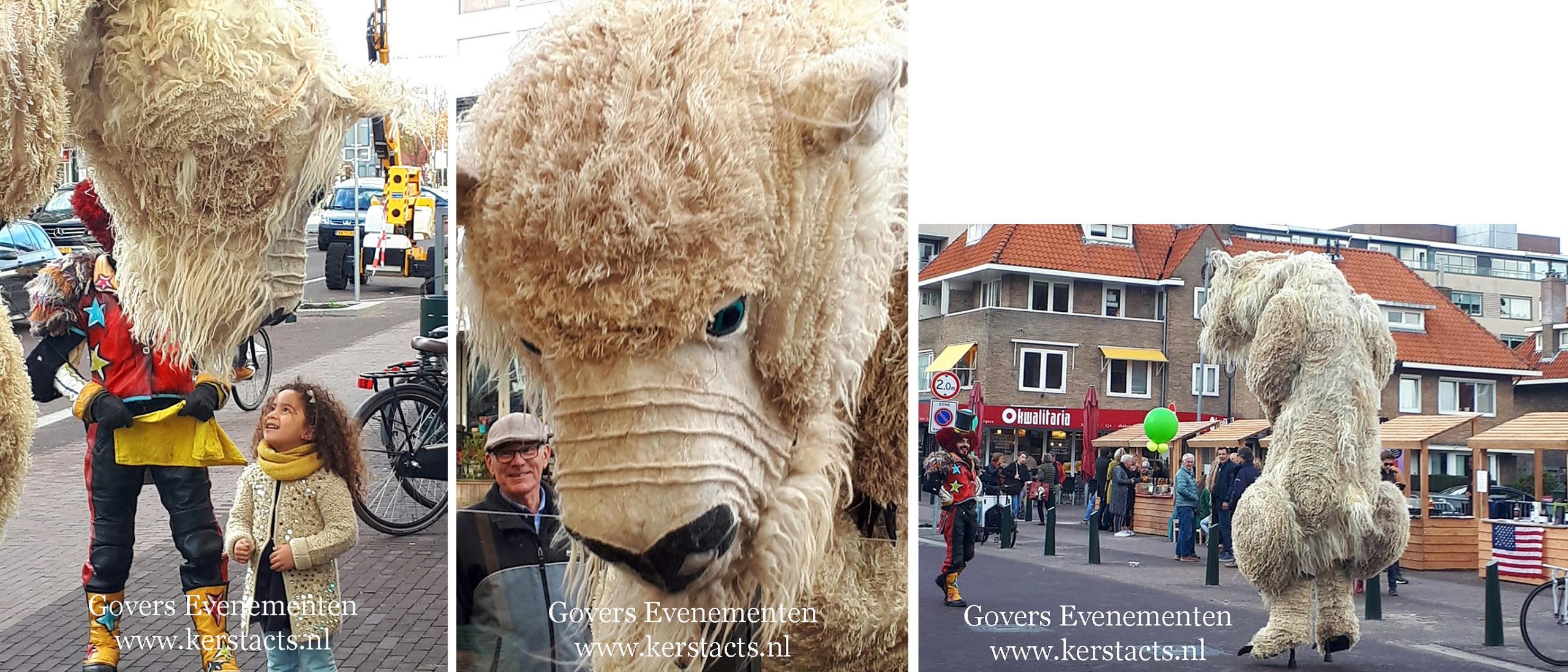 Straattheater, dierentuin, theater met dieren, artiesten boeken, theater voor kinderen, steltenact, dierenvriendelijk, ijsbeer, themafeest, thema act, Govers Evenementen, www.goversartiesten.nl