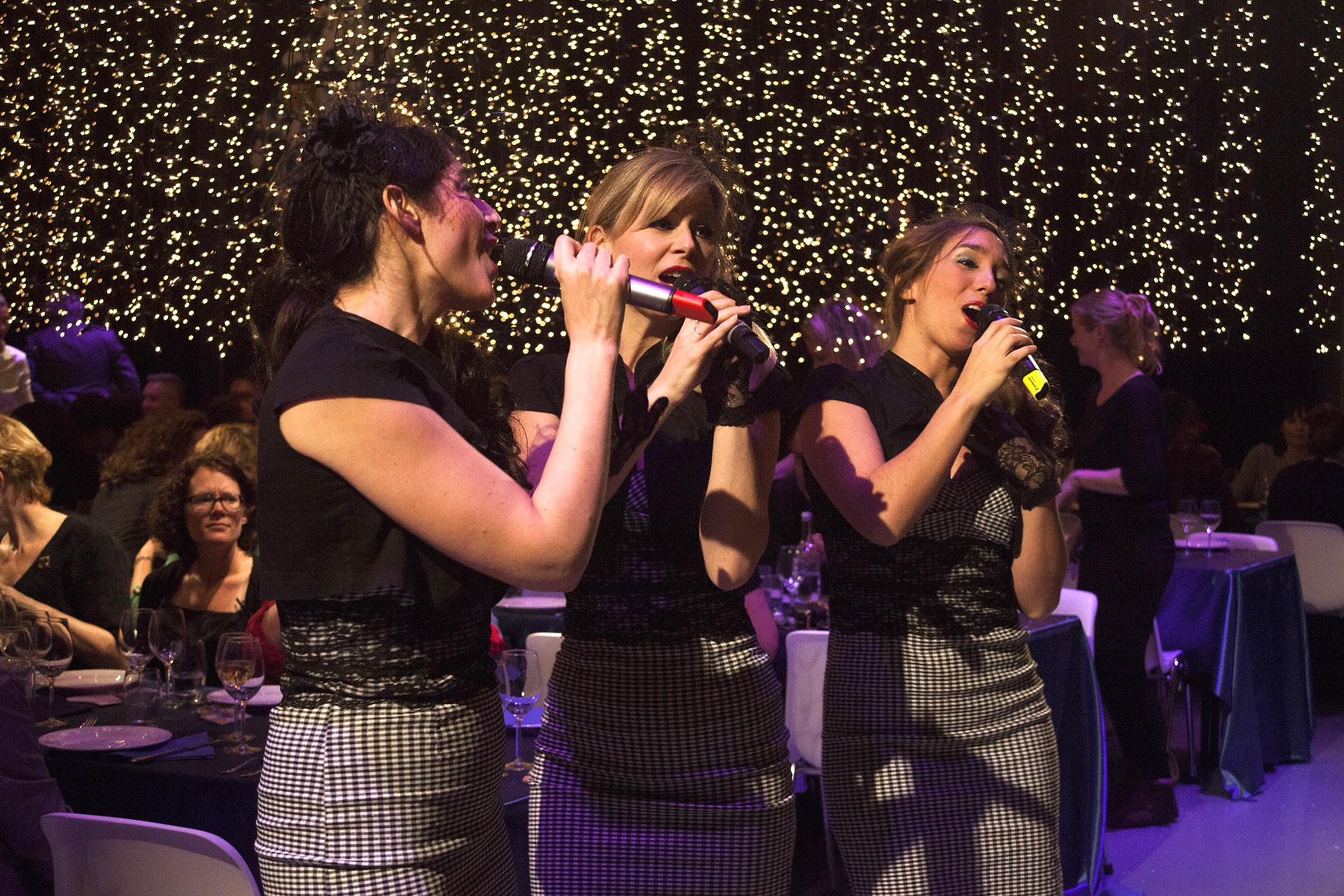 Muzikanten, muziek boeken, jazz muziek, optreden, trio muziek, zangeressen, country, jazzmuziek, Govers Evenementen, www.goversartiesten.nl