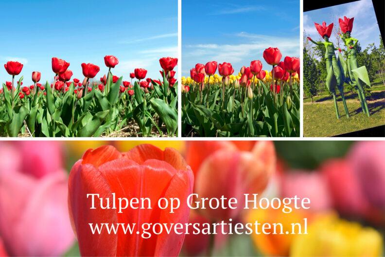 Tulpen op Grote Hoogte, Steltenact, steltentheater, steltenlopers, stelten, straattheater, voorjaar, moederdag, te boeken bij Govers Evenementen: www.goversartiesten.nl